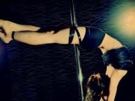 灵子舞蹈连锁佛山晶晶校区爵士舞钢管舞酒吧热舞道具秀