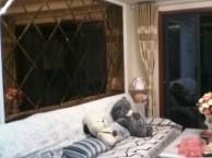 天龙国际大厦 瓷砖美缝 地板打蜡 沙发打蜡 水暖管道专业清洁