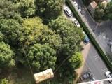 上海沙發吊裝公司 上海吊裝沙發家具上樓公司
