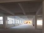 出租滨海独栋5200平方全新厂房,一楼7.5米高