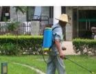 长沙百花园艺:绿植租摆,绿化维护,苗木种植,批零等