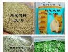 宠物用品饲料猫粮猫砂兔粮提摩西苜蓿草干草笼子饮水器