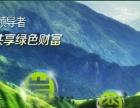 原生态无污染硅藻泥涂料施工,喷绘 彩绘电视 背景墙