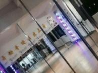 东莞洪梅镇哪里有舞蹈班  东莞星秀舞蹈学院