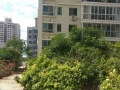 诚心出租海甸五西路正规三房,精装,家电齐全拎包入住,超大阳台
