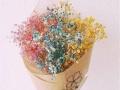 七夕情人节鲜花 爱情鲜花速递 24小时免费送花