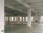 安丰工业区标准厂房四楼一个平面780平方,5吨货梯