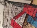 9成新松鼠笼猫笼安格鲁貂笼龙猫笼转让