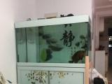 天津西站附近底过滤鱼缸