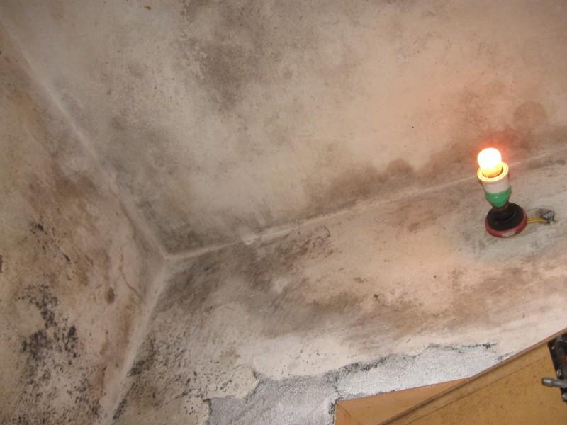 含山县房屋墙面维修翻新,开裂,掉粉,发霉,渗水,涂鸦