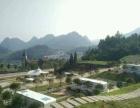黑山1098假日酒店旁1098小区