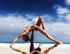 丰台科技园塑形瑜伽,基础瑜伽,专业教学