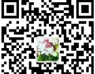 李泰山沙画培训学校十二期10月1日深圳即将开课
