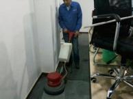 专业清洗纯毛地毯、化纤地毯、普通地毯、混纺地毯