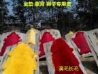 供应优质澳洲羊毛羊皮染色毛皮做坐垫靠背马