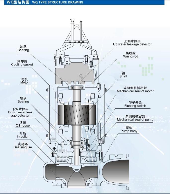 污水泵结构图.jpg