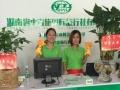 省中青旅国际旅行社浏阳金沙南路营招募事业合作伙伴!
