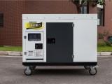 TO22000ET柴油发电机市场价