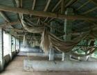 韶关市曲江区20亩养殖场地出租或转让