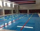 莱蒙银座少儿暑期游泳班