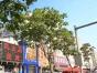 包税出售 363平 13米大门脸 小十字街正街
