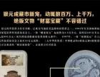 大中华投资币