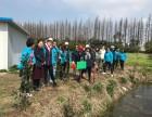 绿色植树节户外植树活动送树苗教练带领热身团建游戏