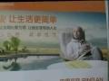 中国平安,车险,寿险。