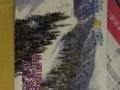 丝绸之路滑雪票