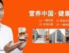 新一代营养早餐食品 盛元中天品牌招商 淘宝天猫京东微商货源