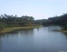 东湖区 其他 90亩鱼塘出售73万