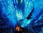 欢乐出行 香港澳门玩三天两晚海洋公园只需460元