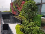 杭州拱墅園林綠化養護花卉綠植租賃銷售