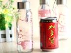 韩版可爱卡通便携密封哆啦A梦不锈钢盖带提绳hellokitty玻璃水杯