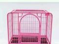 中大小狗笼子猫笼围栏批发零售