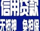 郑州个人应急借贷公司 免担保贷款