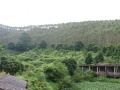 出租:佛山高明区80亩休闲农庄