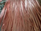 铜包钢扁钢出厂价