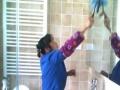 鸿运来专业保洁家庭、企业保洁 优质服务预约五折优惠
