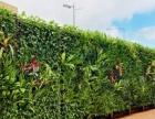 专业垂直绿化墙,植物墙,立体花柱,园林设计