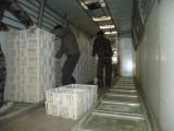 厂家大量批发鸡苗运输周转筐 雏鸡苗筐子 塑料筐子拉鸡苗