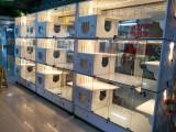 貓舍柜籠貓屋貓別墅籠玻璃雙面展示貓舍專用籠定制雙面籠