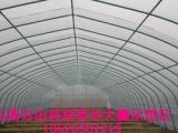 供应南方温室蔬菜大棚建设 四川温室大棚建