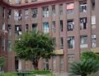 博仕后家园1房精装 生活方便,超便宜抢租房