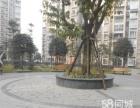 成都西站地铁4号线清水路苑 43 大车位 300元/月