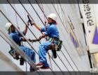临桂县蜘蛛人高空清洗 外墙 玻璃 家政保洁服务公司
