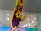 中国广西醒狮团