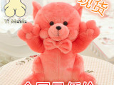 扬州厂家直销创意新款粉红猫毛绒玩具 大黄鸭系列产品一件代发