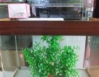 出售精品台湾进口红财神和黄金财神鱼