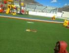 pvc塑料地板,塑胶跑道,人工草坪,墙壁绘画